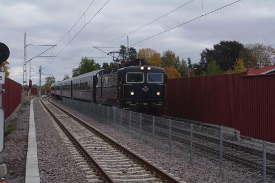 IMGP8766